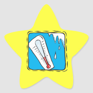 Winter Weather Star Sticker