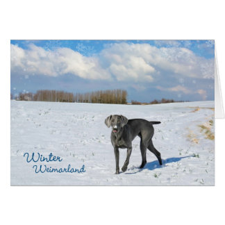 Winter Weimarland Card