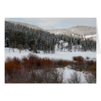 Winter Wilderness Greeting Cards