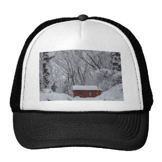Winter Woderland Cap