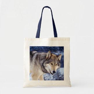 Winter Wolf 2