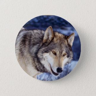 Winter Wolf 2 6 Cm Round Badge