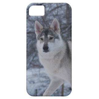 Winter wolf case for the iPhone 5