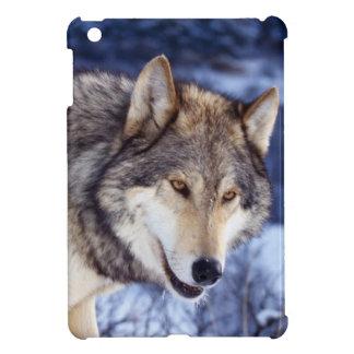 Winter Wolf iPad Mini Cases