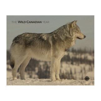 Winter - Wolf Wood Wall Art