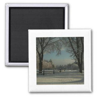 winter wonderland 1 square magnet