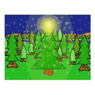 Winter Wonderland Forest Postcard