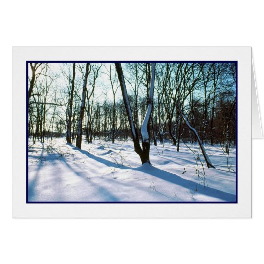 'Winter Wonderland' Holiday Card - Winter Season