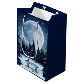 Winter Wonderland Medium Gift Bag