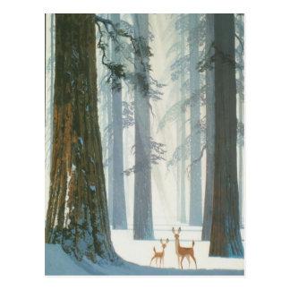 Winter Wonderland Postcard