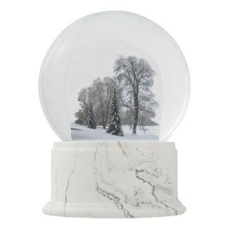 Winter Wonderland Snow Globe Snow Forest Snowglobe
