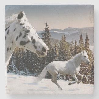 Winter Wonderland Stone Coaster