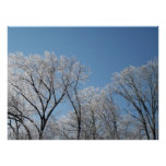 Winter Wonderland with Iced Trees Print