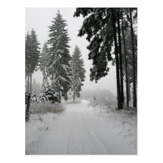 winter wood postcard
