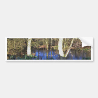 Winter Woodland Bumper Sticker