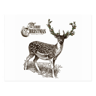 winter woodland christmas deer postcard
