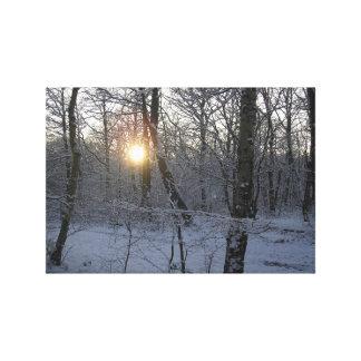 Winter Woodland Snowy Sunset Canvas Art