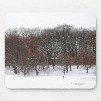 Winter woods. mouse pad