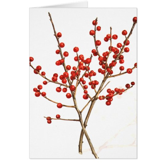 Winterberry Card