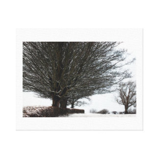 Winters Bare Gallery Wrap Canvas