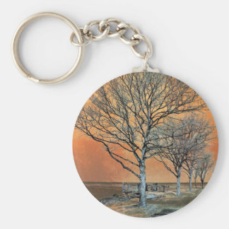 Winter's Dawn Key Chains