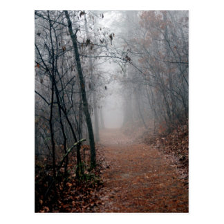 Winters Fog - No End in Sight on the Trail Gifts Postcard