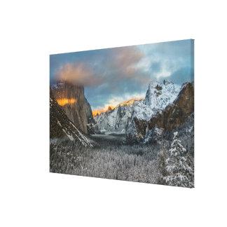 Winter's Mark Canvas Print