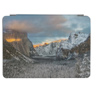 Winter's Mark iPad Air Cover