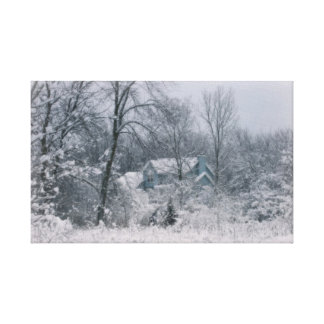 Winter's Silence Canvas Print