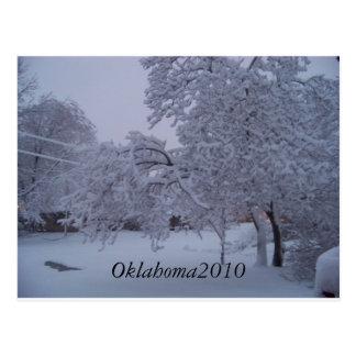 winterstorm2010 (oklahoma) postcard
