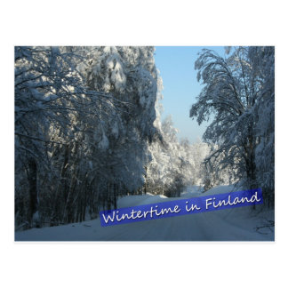 Wintery Country Road Postcard