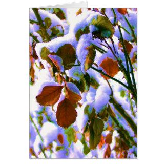Wintery Rose Bush Surprise Ciolor! Note Card