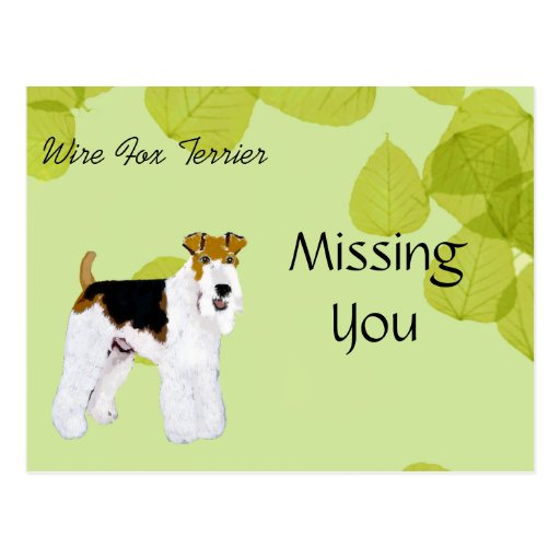 Wire Fox Terrier - Green Leaves Design Post Card