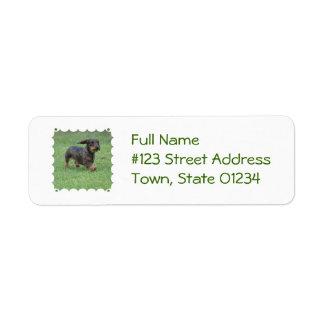 Wire Haired Dachshund Return Address Label