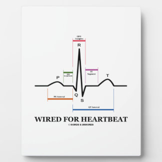 Wired For Heartbeat (Electrocardiogram) Display Plaque