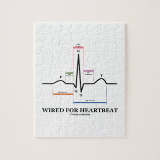 Wired For Heartbeat (Electrocardiogram) Puzzles