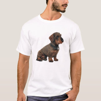 wired hair dachshund T-Shirt