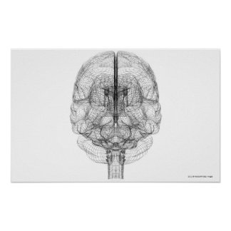 Wireframe of the brain poster
