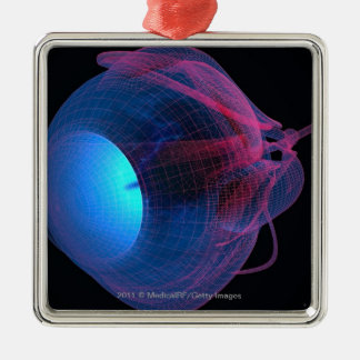 Wireframe of the muscles of the eye christmas ornament