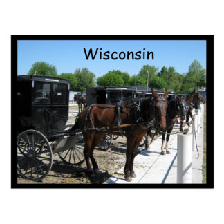 Wisconsin Amish Postcard