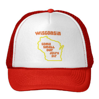 Wisconsin Come Smell Our Dairy Air Cap