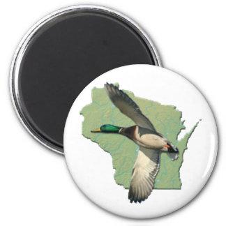 Wisconsin duck 6 cm round magnet