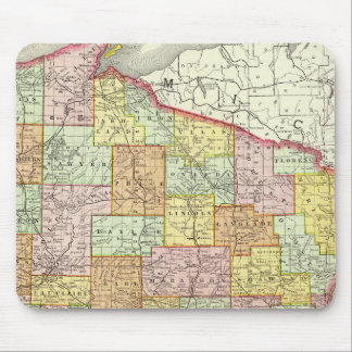 Wisconsin Mouse Mat