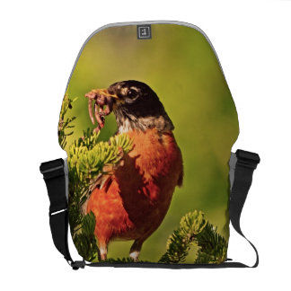 Wisconsin Robin Courier Bag