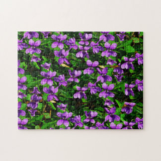 Wisconsin Wood Violets Puzzle