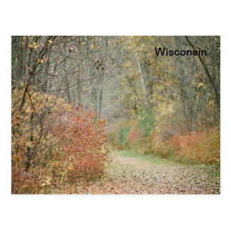 Wisconsin's forests post card
