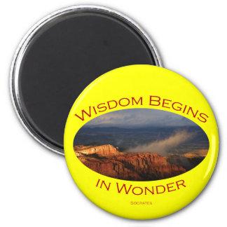wisdom 6 cm round magnet