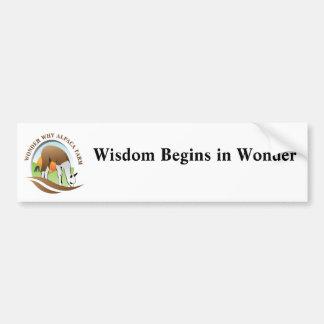 Wisdom Begins In Wonder Bumper Sticker