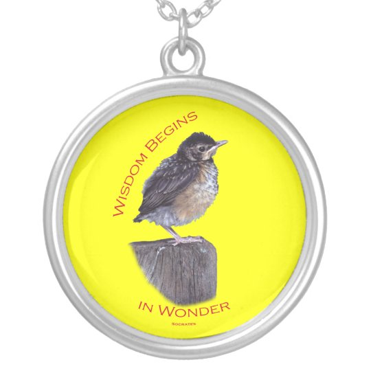 Wisdom Begins in Wonder Silver Plated Necklace