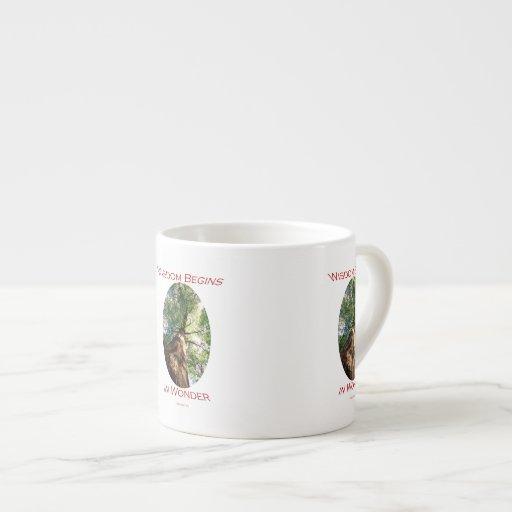 Wisdom Begins in Wonder Espresso Mugs